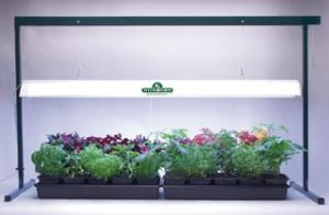 Jump Start Grow Light System - 4 Ft.